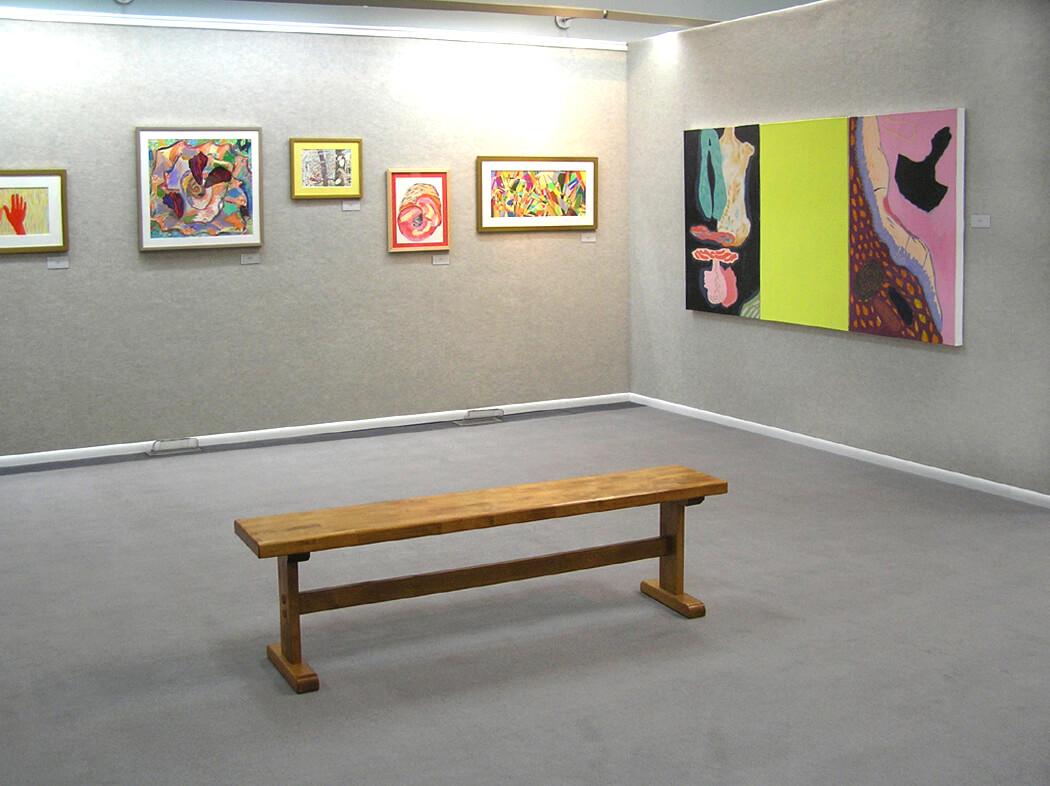 Wyoming Exhibition, Linda Hains, installation views #2